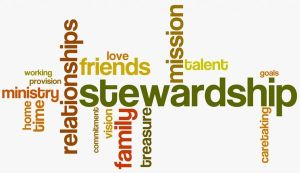 stewardship600wordle